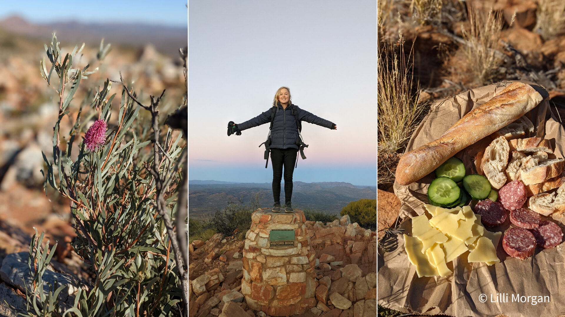 Scenes from the Larapinta Trail